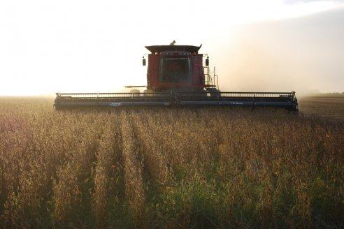 La recolección de la soja de primera apenas supera el 22% de lo plantado