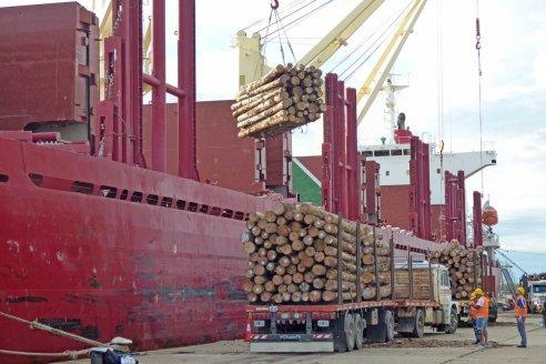 Protocolos sanitarios garantizan la operatoria en puertos entrerrianos