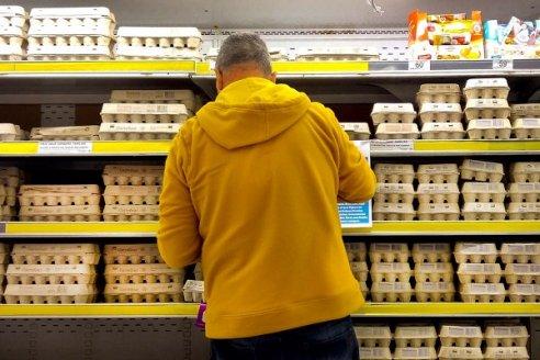 Avicultores de huevo afirman que trabajan a pérdida y advierten del peligro de abrir la importación