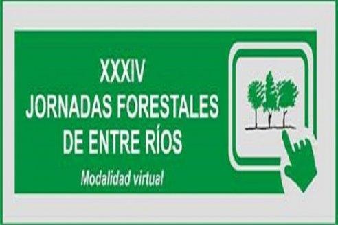 XXXIV Jornadas Forestales de Entre Ríos
