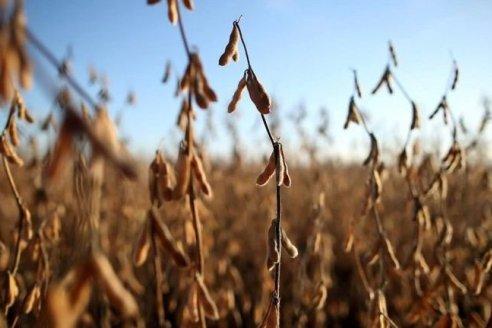 Sequía, todas las alarmas encendidas