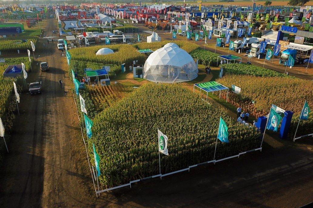 Diseñan protocolos para materializar las exposiciones rurales a cielo abierto.
