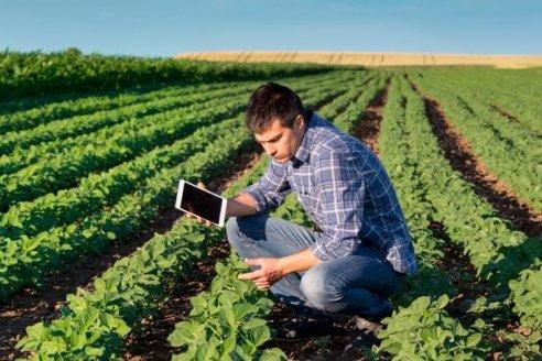 Por segundo año consecutivo, baja la seguridad alimentaria mundial