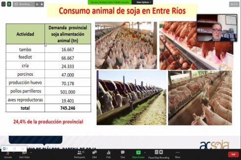 Entre Ríos participó de una jornada virtual sobre perspectivas para la cadena de la soja