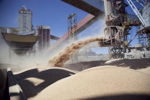 ¿Cómo se comportó la comercialización de soja luego de la baja de retenciones?