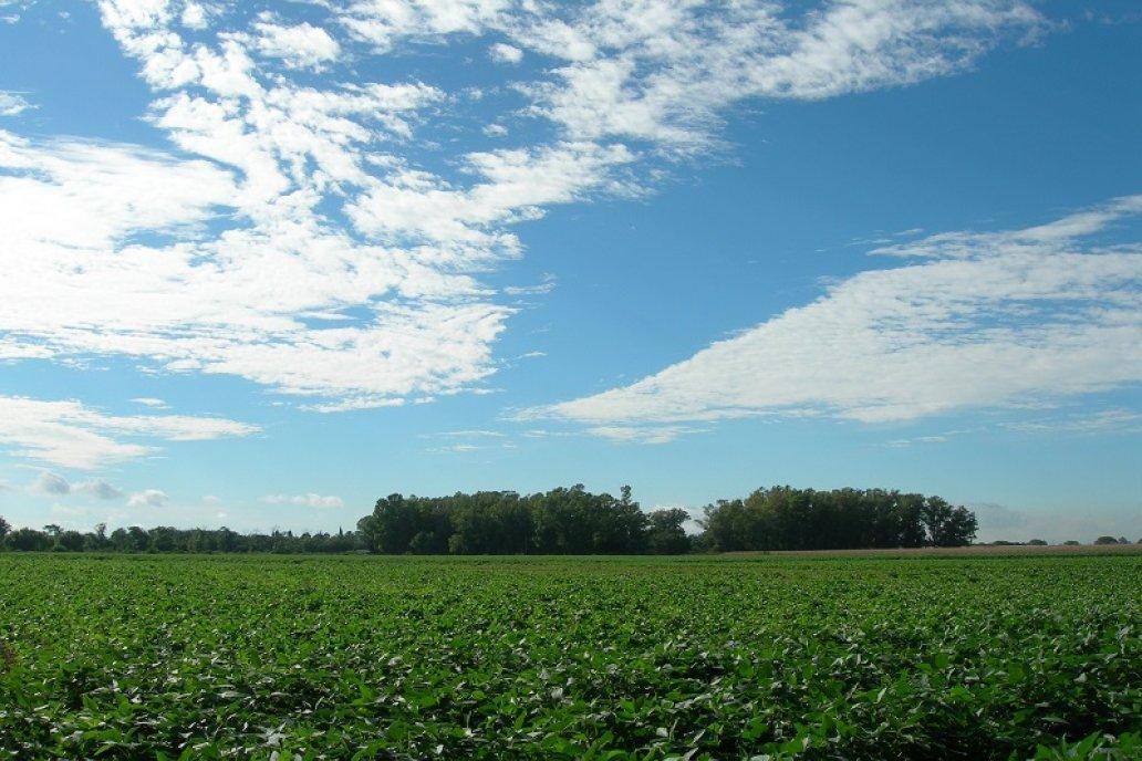 El pronóstico de lluvias de corto plazo es para el centro y norte del país.