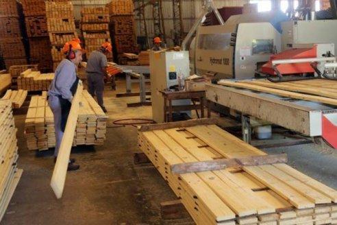 El Estado invertirá 240 millones para potenciar la foresto industria entrerriana