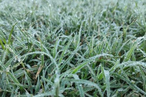 Este lunes hay que esperar un poco de frío y heladas tardías