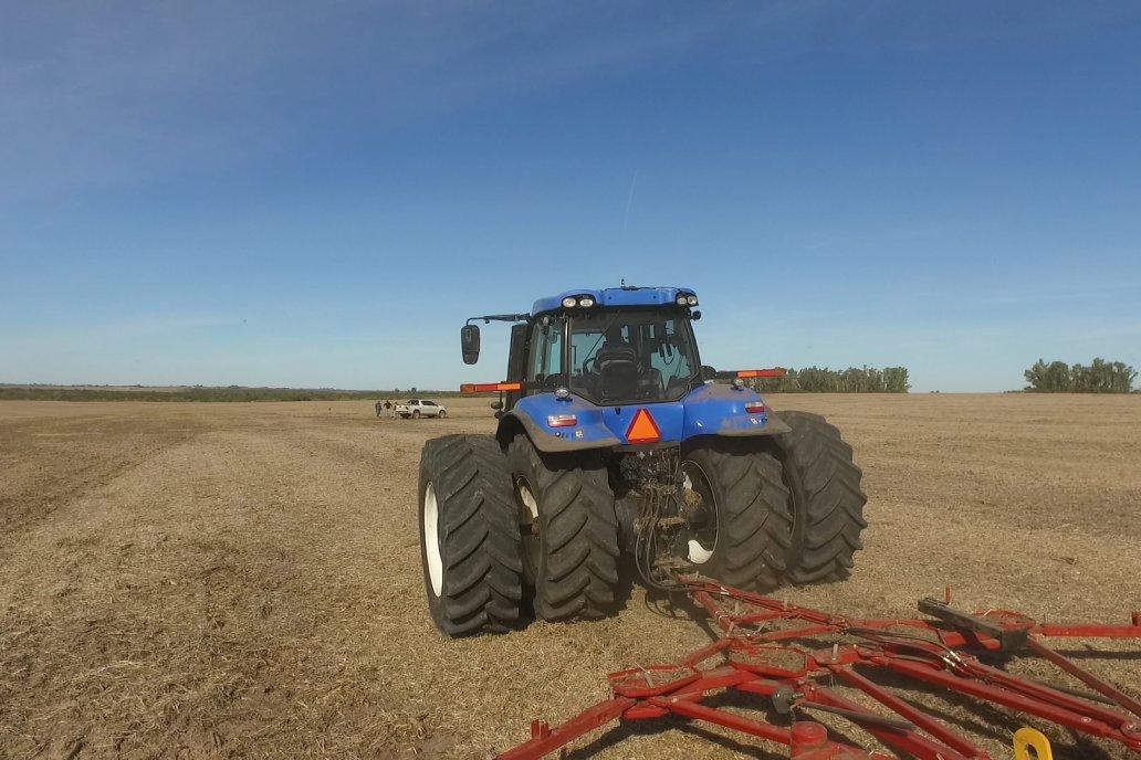 Todo indica que la siembra de trigo quedará suspendida este fin de semana.
