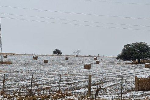 El campo se pinta de blanco y las labores agrícolas se frenaron en el centro y sur de la Argentina
