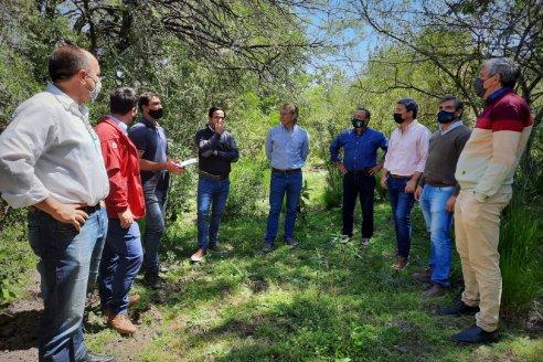 """Pablo Silvestre: """"Hay mucho para crecer en el monte, con tecnología y profesionales capacitados"""""""